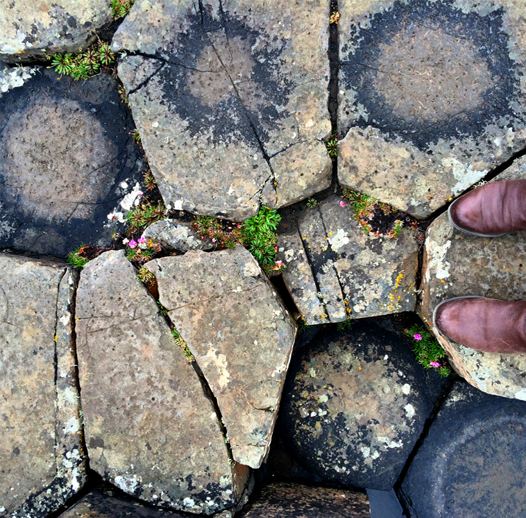 Giants Causeway From Where I Stand